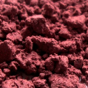 Blush-Rosewood-vegan-Probe